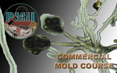 Commercial Mold Inspector Certification Online Training & Certification