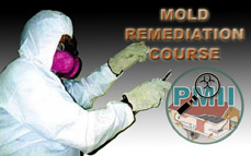 Certified Mold Remediation Course